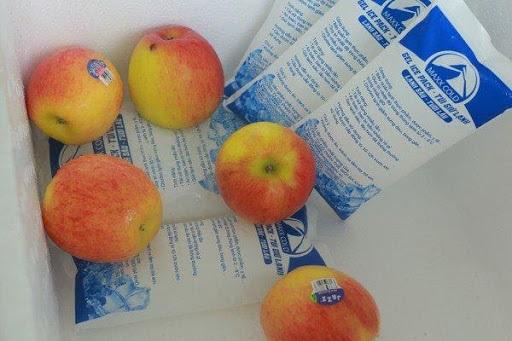 Bảo quản thực phẩm hiệu quả nhờ đá gel